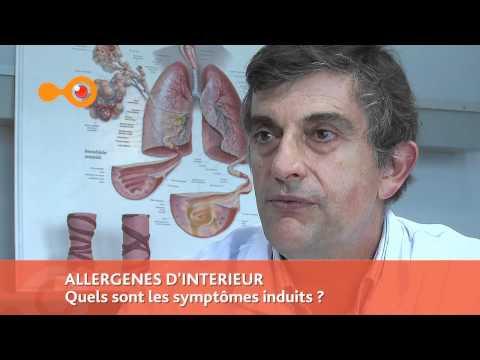 ALLERGIE: Allergènes D'intérieur - Quel Impact Sur La Santé ? Interview Du Pr De Blay