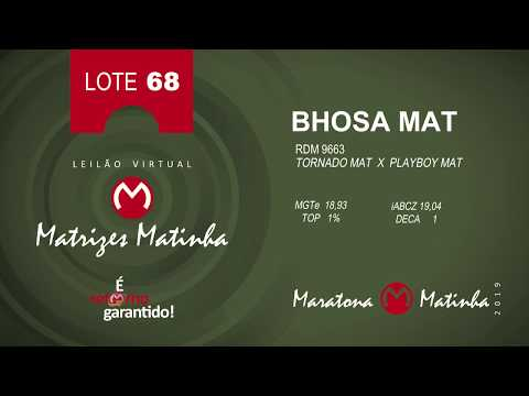 LOTE 68 Matrizes Matinha 2019