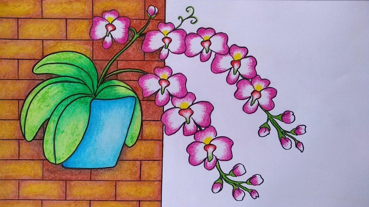 Menggambar Bunga Anggrek Cara Menggambar Bunga Anggrek Di Dinding Youtube