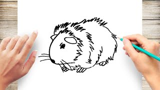 How to Draw a Guinea Pig Step by Step for Beginner