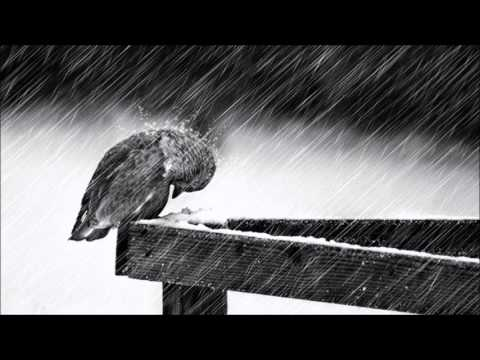 Cold - Jorge Mendez (1 Hour Mix with Subtle Rain) [Saddest Piano & Violin Ever]