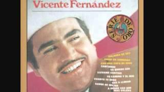 Vicente Fernandez Para Que Seas Feliz