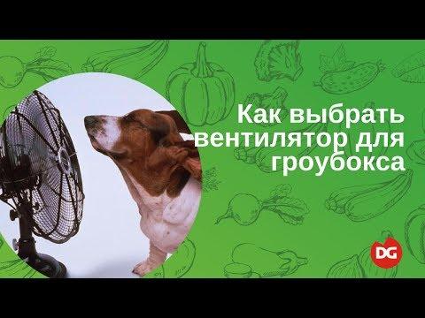 №9 Как выбрать вентилятор для гроубокса