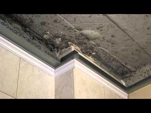 видео: Пластиковые панели на потолке