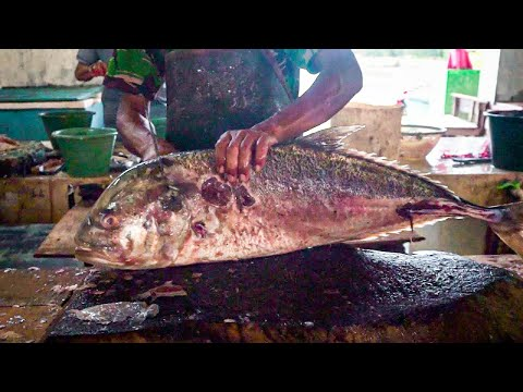 ACEHNESE OCEAN || GIANT TREVALLY 12 Kg=$160 FISH CUTTING EXPERTS  ACEHNESE&FSIH FILLET FISHERMAN WAY
