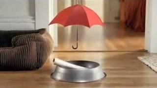 Смешная реклама страховой компании Travelers (кость)(, 2012-01-14T19:45:19.000Z)