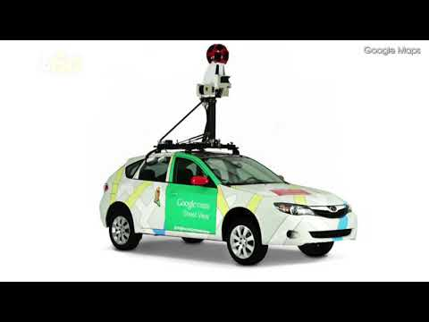 An Adorable Dog Photobombs the Google Map Driver