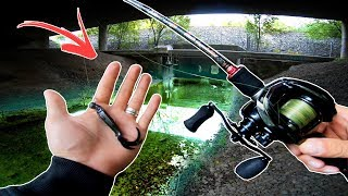 Fishing an URBAN CREEK - does it hold fish? 🐊🏢 (Grand Slam!)