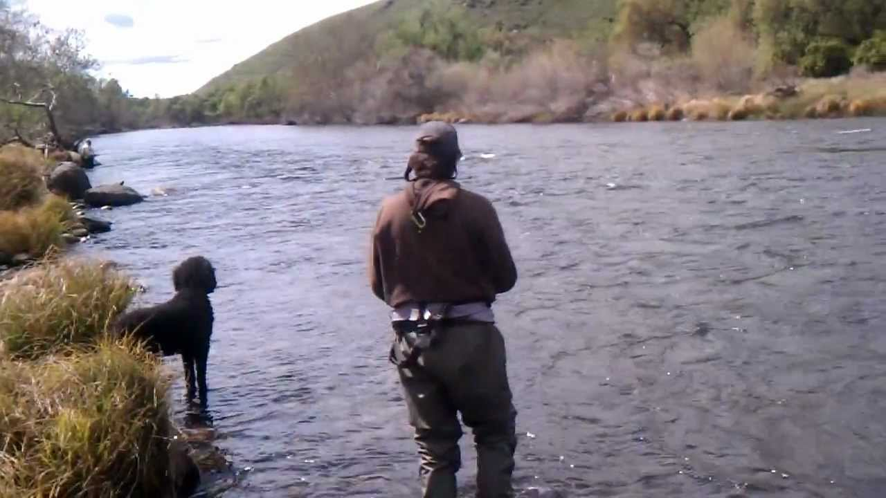 4 1 12 fly fishing kings river fresno ca youtube for Kings river fishing
