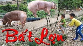 Cao thủ dắt lợn tắm cho lợn. Hello Bin ♥