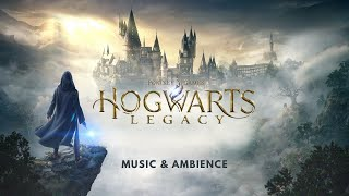 Harry Potter Ambient Music | Hogwarts Legacy | Relaxing, Studying, Sleeping