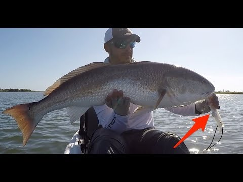 Fish Grips Vs. Landing Net (Which One Is Better)?