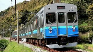 元東急の8000系が好きな人は少数派? 19日 朝の伊豆急行線 8000系と赤いプラレール号