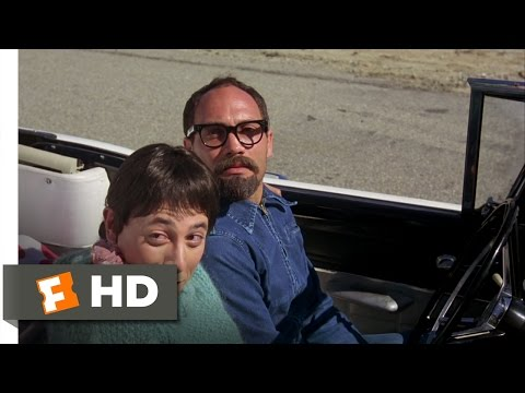 Peewee's Big Adventure 710 Movie   Why Don't You Take a Picture? 1985 HD