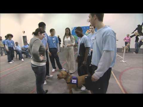 "Safe Humane Chicago's ""Lifetime Bonds"" at IYC Chicago - HD"