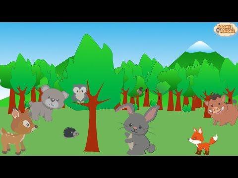 Az erdő állatai letöltés