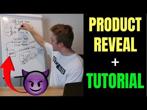 $300 In 6 Hours With Shopify   Product Reveal + Step By Step Beginner Tutorial