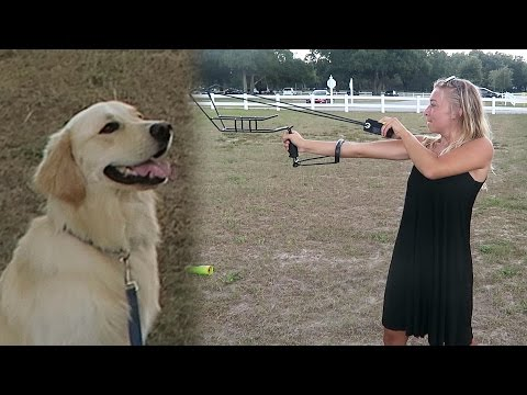 THE ULTIMATE FETCH TOYS! Tennis Ball Slingshot and Bazooka (SCS #63)