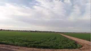 Sakata, Yuma, Arizona, Farm Fields