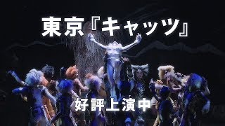 劇団四季:キャッツ:東京公演プロモーションVTR