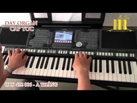 VỀ ĐÂU MÁI TÓC NGƯỜI THƯƠNG - Trung Tâm Organ Nhạc Rừng - Học Đàn Organ Nhanh Nhất