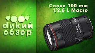 Обзор объектива Canon 100 mm f/2.8 L Macro