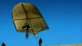 Leonardo da Vinci Glider - reality test, Rate My Science