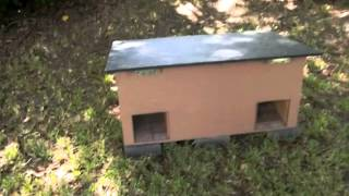 Do-it-yourself Feral Cat Shelter Overview