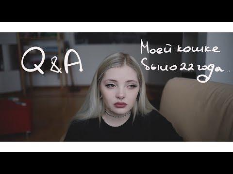 Q&A.черная полоса в моей жизни.