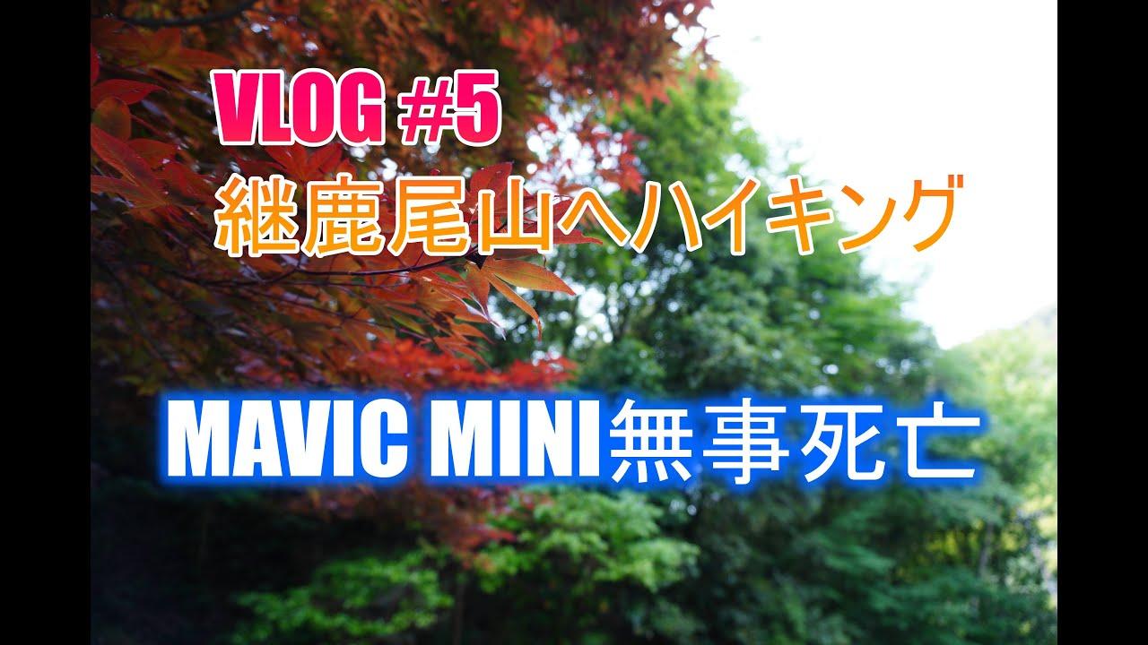VLOG#5愛知県犬山市の寂光院~継鹿尾山(つがおさん)にハイキング Mavic Mini無事死亡
