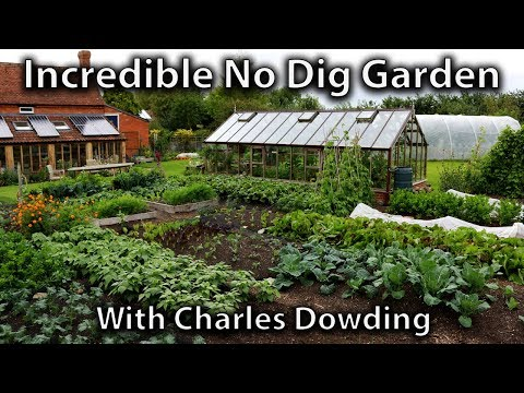 Charles Dowding's Incredibly Productive No Dig Market Garden (1/4 Acre Abundance)