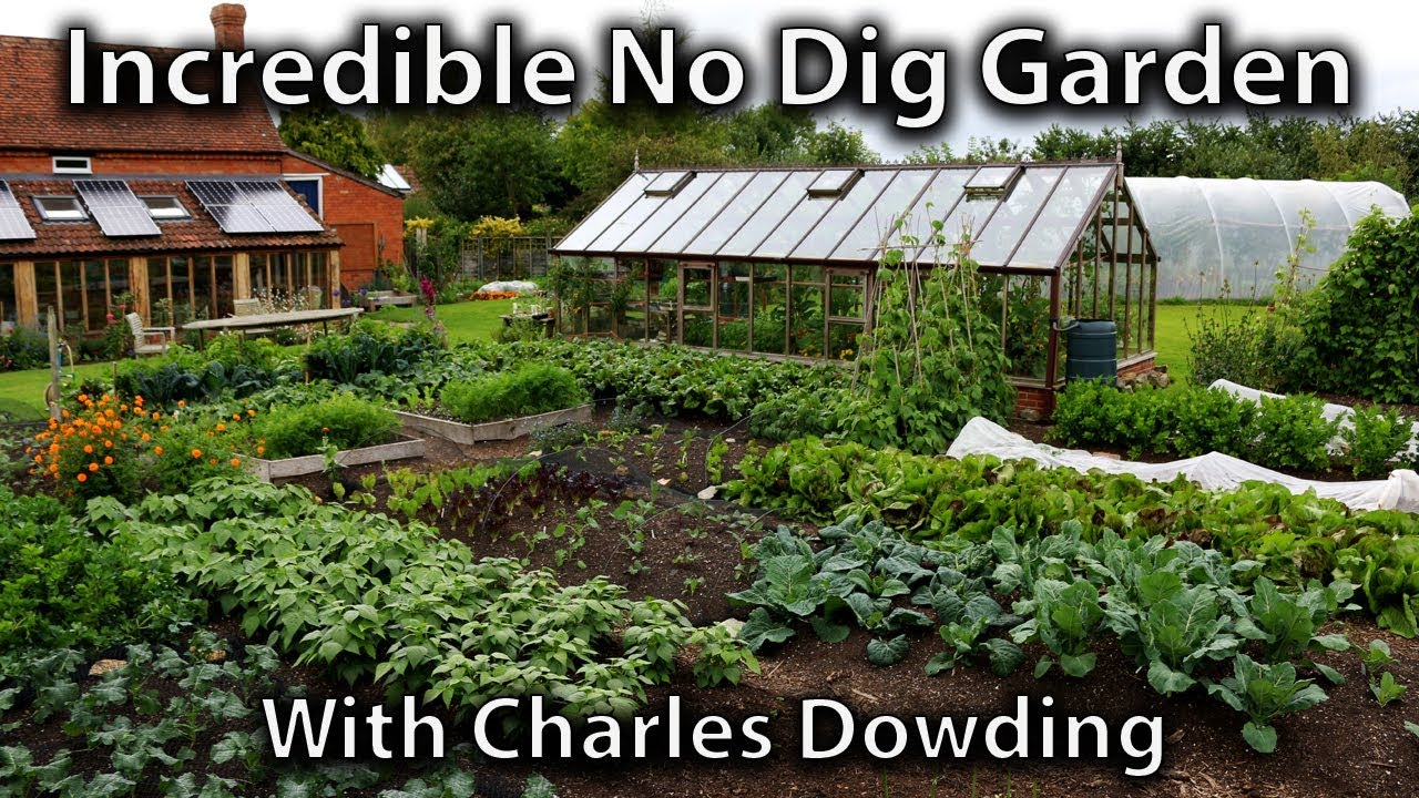 No dig vegetable gardens with raised garden beds - Charles Dowding S Incredibly Productive No Dig Market Garden 1 4 Acre