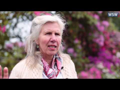 Staudengärtnerei Arends: Anja Maubach