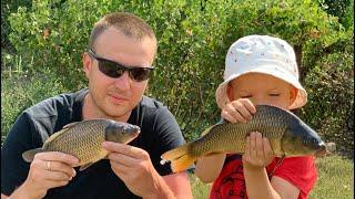 Рыбалка на Карпа Село семейная рыбалка Как словить карпа зеркального на фидер на кукурузу