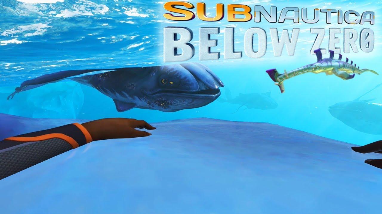 RIDING GLOW WHALES + GRUMPY 2?! | Subnautica Below Zero [#5]