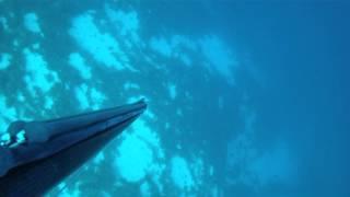 8-9 June 2013 - Dimitris Vosios  (Spearfishing - Pescasub - Ψαροντούφεκο)