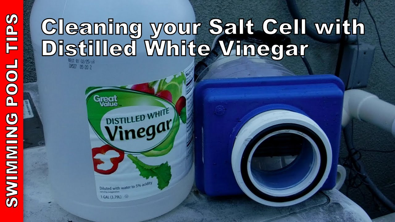 How To Clean Your Pool Salt Cell With 5 Distilled White