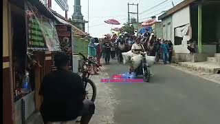 Arak arakan kuda renggong SI RONAL GROUP