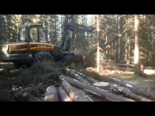 Metsätalousinsinööri puunhankinnassa