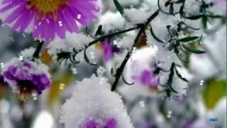 Дыхание   зимы ...