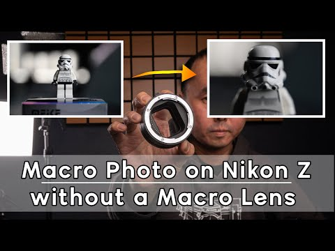 macro-photography-without-macro-lens-on-nikon-z-(with-autofocus)---meike-mk-z-af1-review