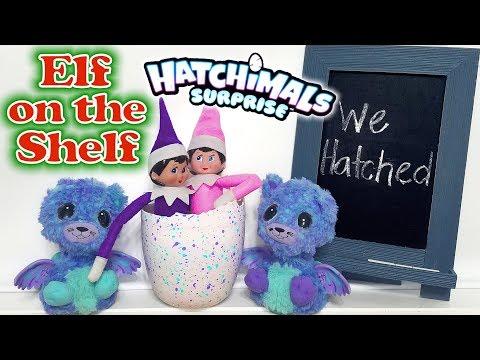 Purple & Pink Elf on the Shelf - Hatching Elves! Hatchimals Suprise Egg Twins! Day 7