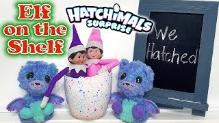 Purple & Pink Elf on the Shelf - Hatching Elves! Hatchimals Suprise Egg Twins! Day 7