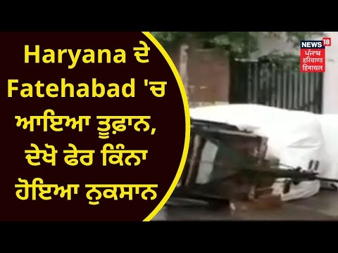 Haryana News :