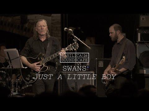 Swans perform