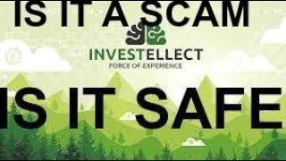 Investellect -- longest running hyip?