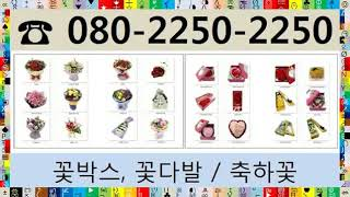 근조배달 080-225O-225O (일산로)일산병원장례…
