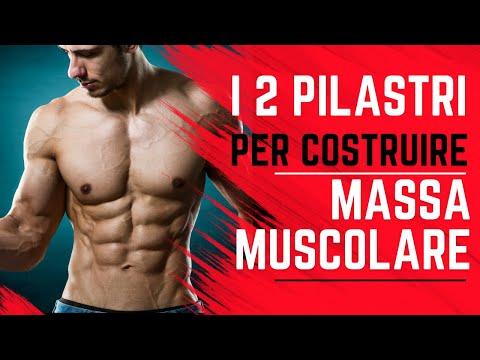 2-fattori-chiave-dell'ipertrofia-e-aumento-massa-muscolare