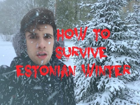 5 Tips to Survive Estonian Winter