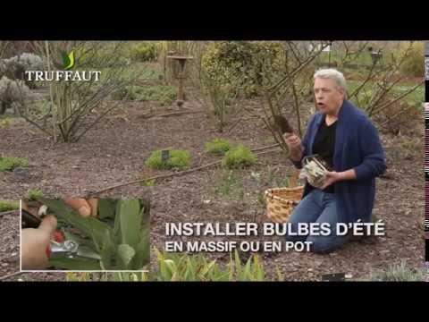 calendrier du jardinier nos conseils pour jardiner en avril jardinerie truffaut tv youtube. Black Bedroom Furniture Sets. Home Design Ideas
